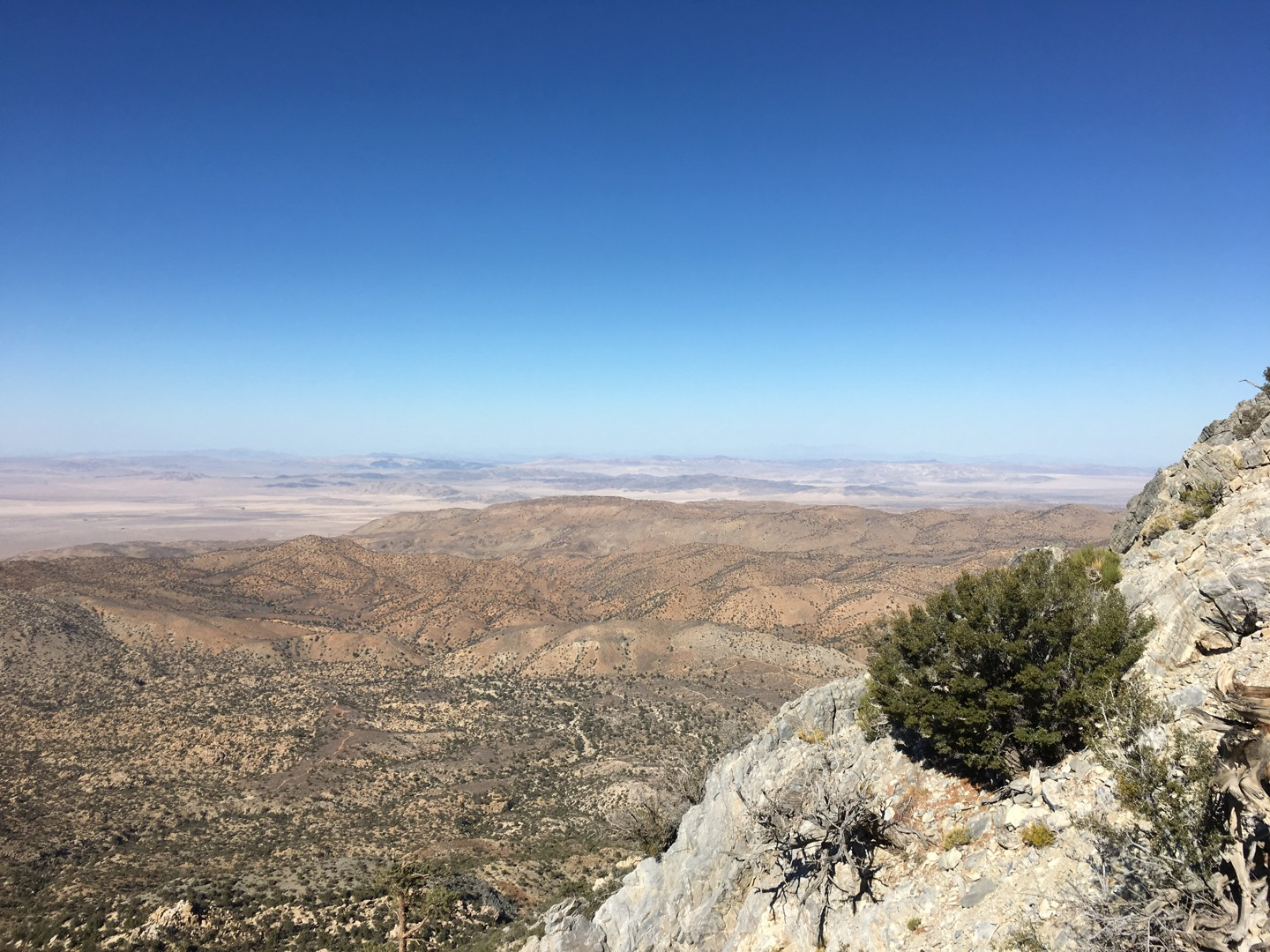 Trail Review: 2N90 - Tip Top Mountain