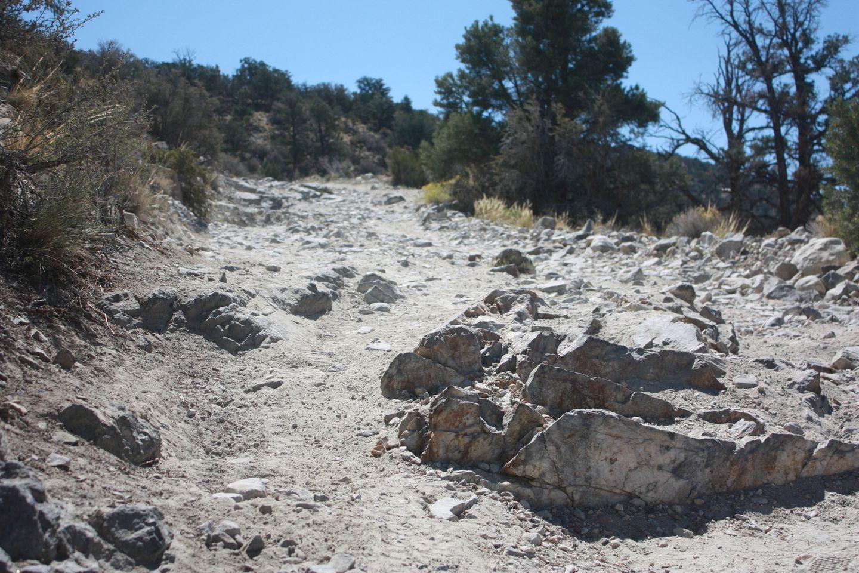 2N90 - Tip Top Mountain - Waypoint 2: Rock Garden