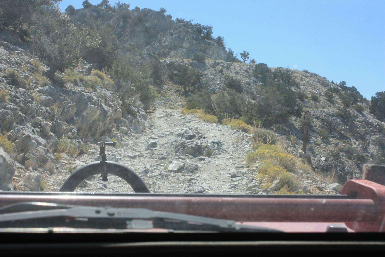2N90 - Tip Top Mountain - Waypoint 6: Summit Climb