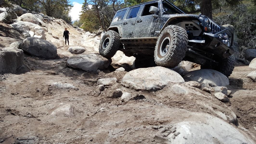 John Bull Gate Keeper - Waypoint 1: Trail Head