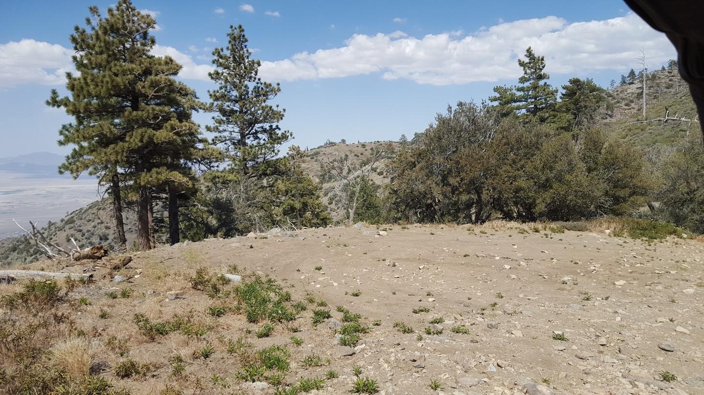 3N17 - White Mountain - Waypoint 6: Midway Exit - 3N11