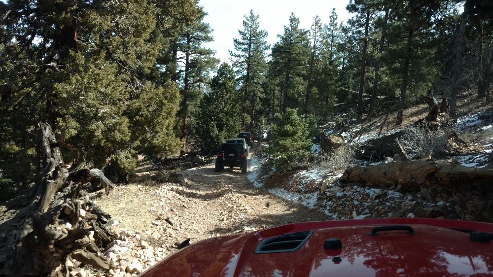 Trail Review: 3N69 – Gold Mountain