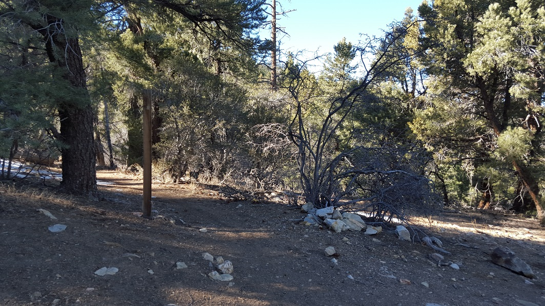 3N69 – Gold Mountain - Waypoint 6: Pacific Crest Trail