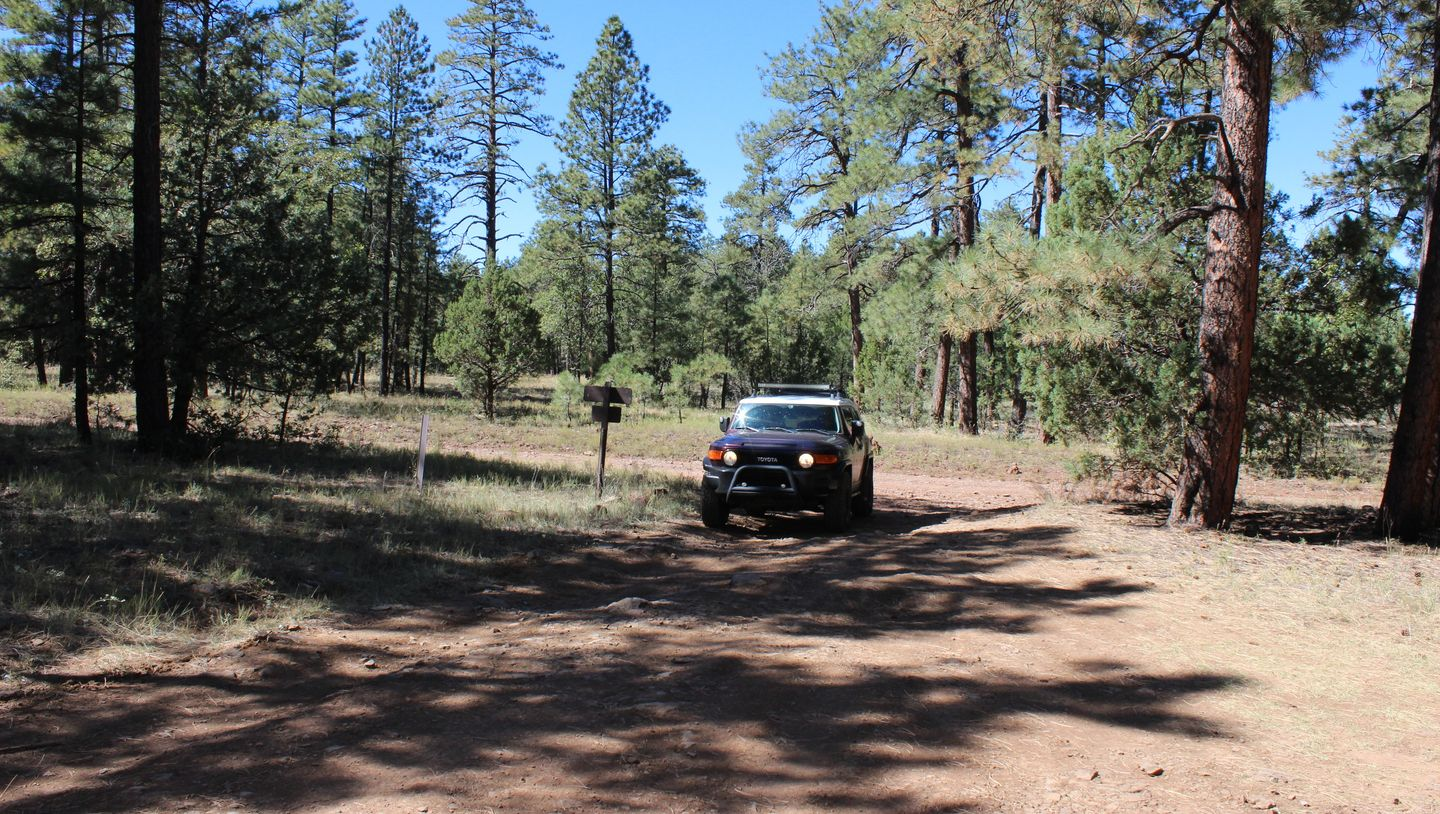 Schnebly Hill Road - Waypoint 14: FR 801 / Hotloop / Jack Canyon Intersection