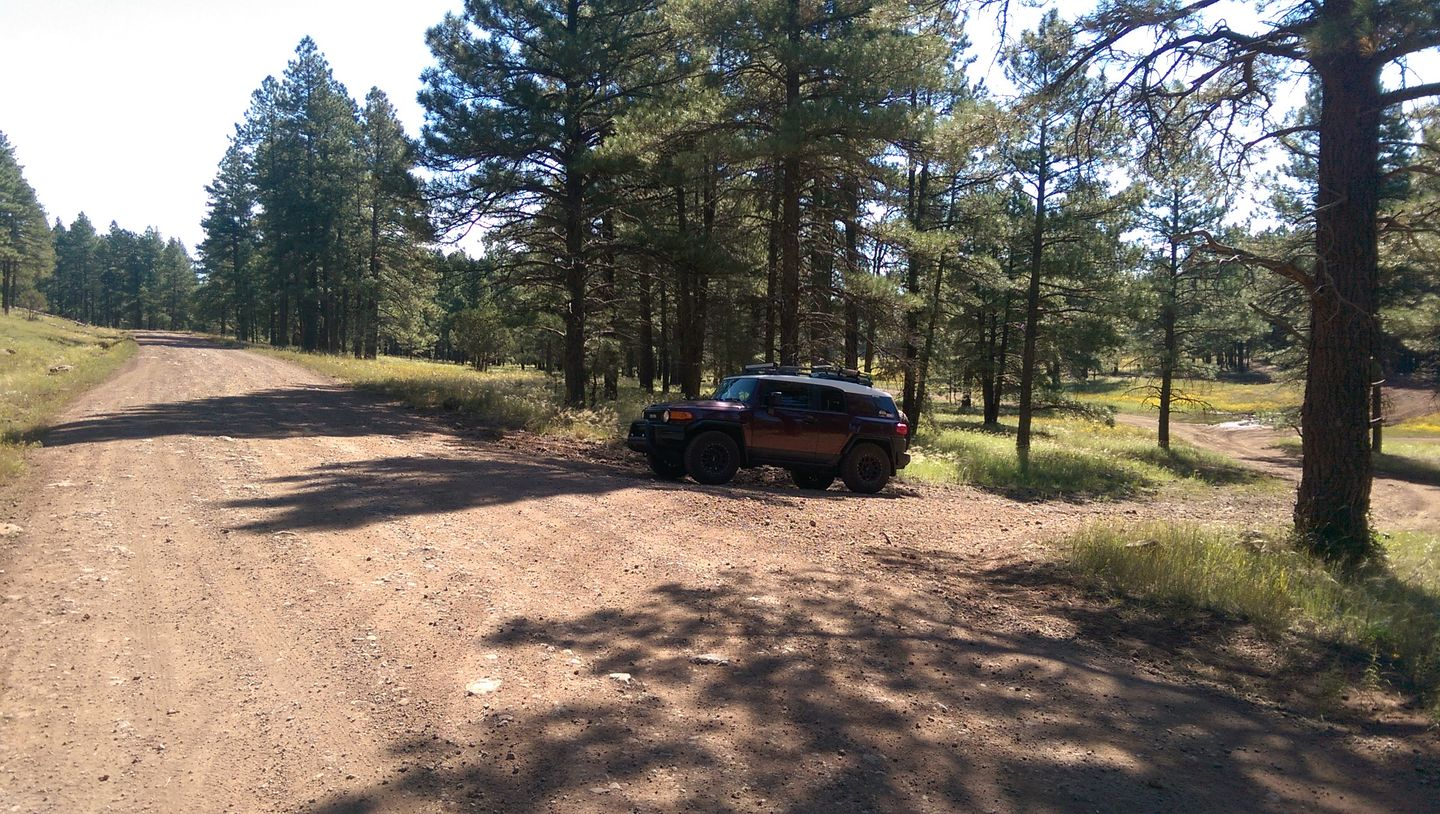 Schnebly Hill Road - Waypoint 16: Large Camping Area