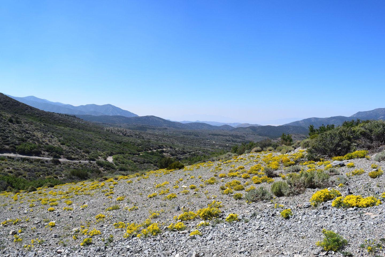 Highlight: Wheeler Pass