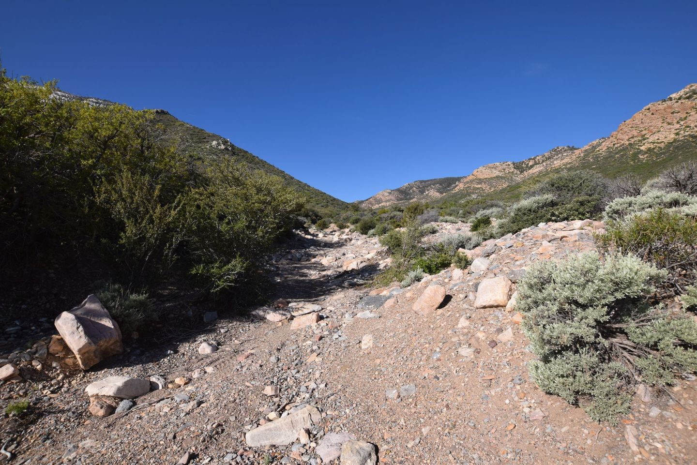 Wheeler Pass - Waypoint 13: Rock Garden Trail