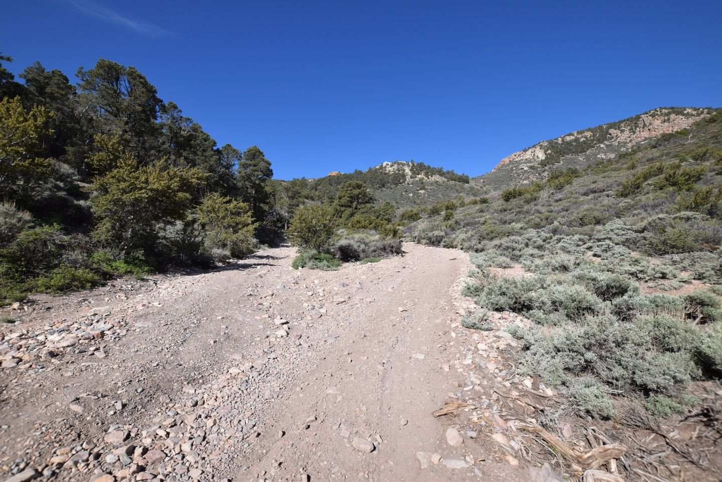 Wheeler Pass - Waypoint 15: Y Intersection