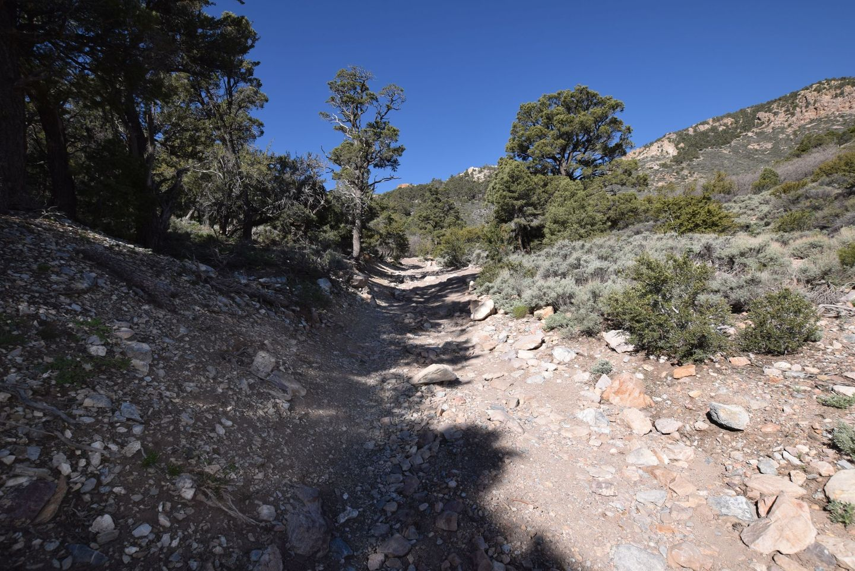Wheeler Pass - Waypoint 16: Rock Garden trail