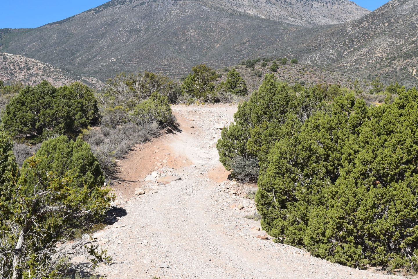 Wheeler Pass - Waypoint 7: Y intersection