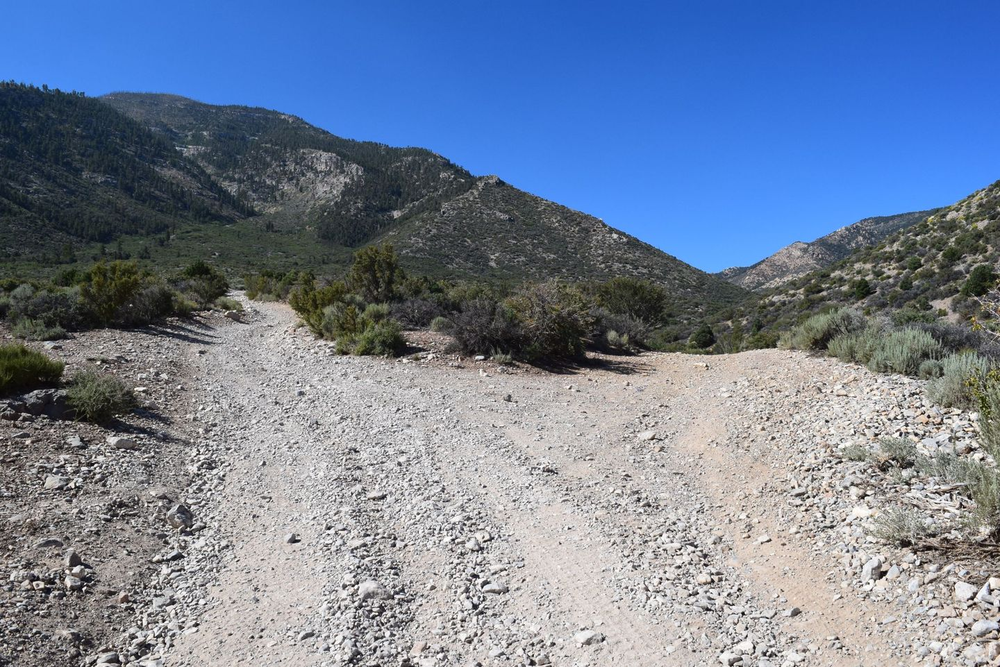 Wheeler Pass - Waypoint 10: Y intersection