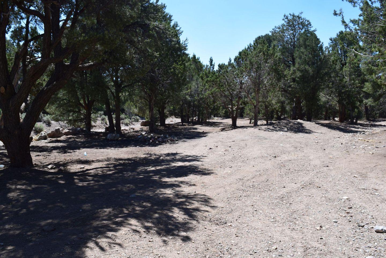 Wheeler Pass - Waypoint 20: Wheeler Well Campground