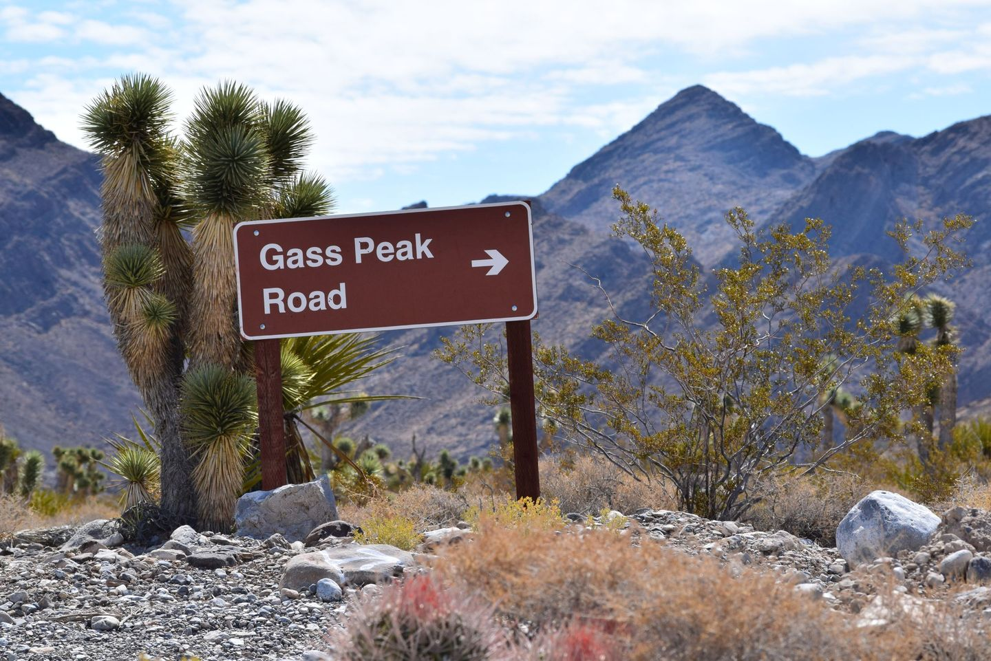 Mormon Well Road - Waypoint 3: Gass Peak Turn