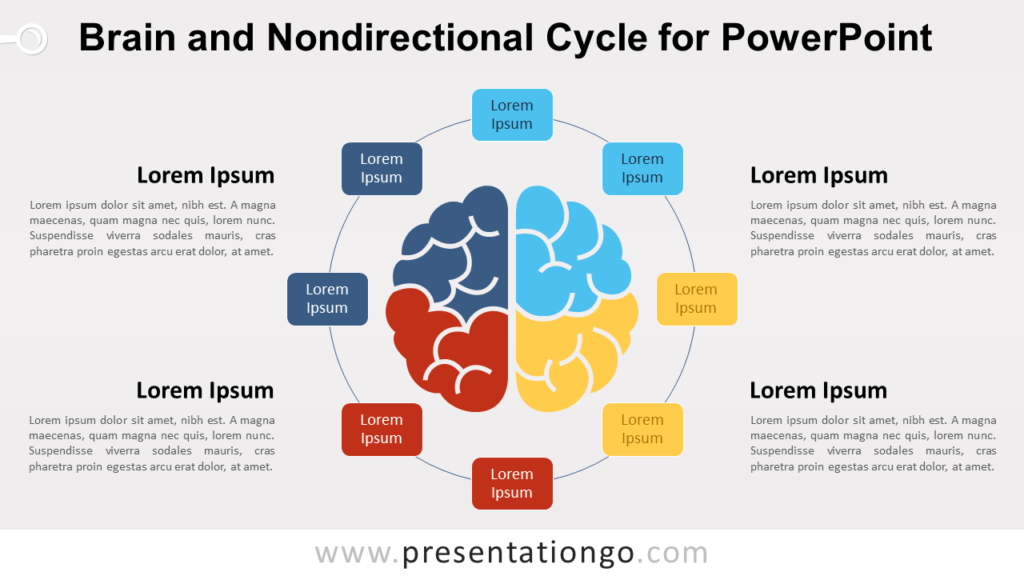 Brain Cycle for PowerPoint