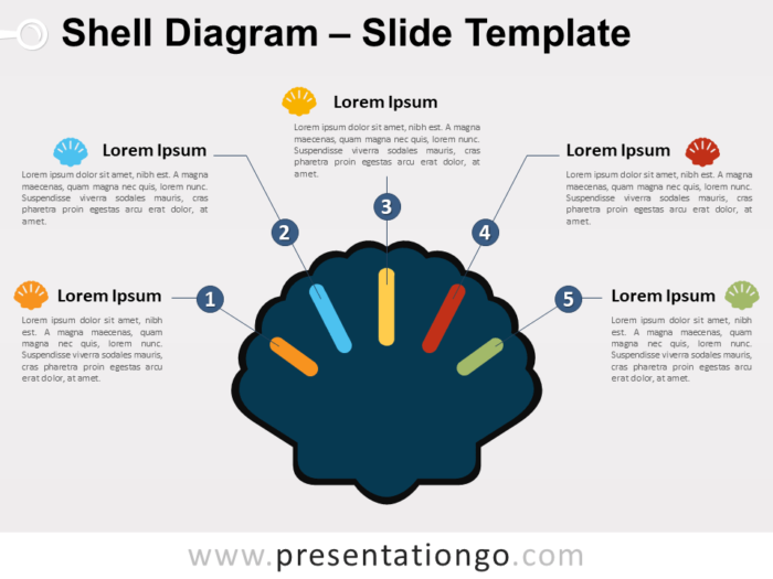 Free Shell Diagram for PowerPoint