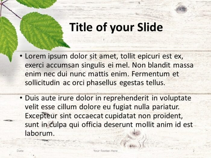 Free Green Leaves Flat Lay Template for PowerPoint – Title and Content Slide (Variant 1)
