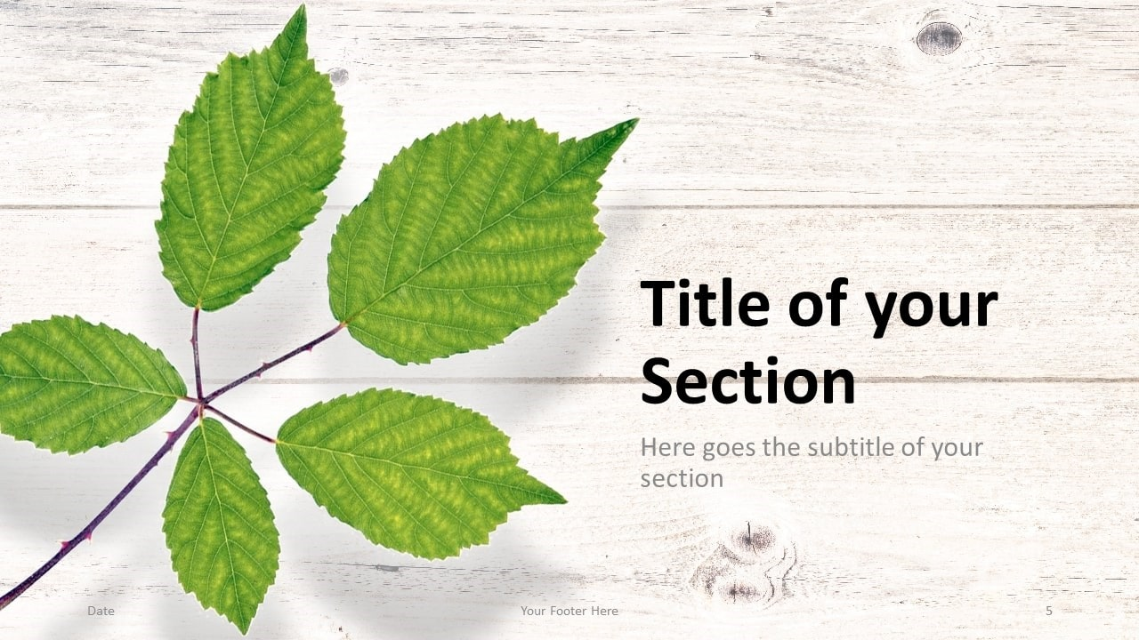 Free Green Leaves Flat Lay Template for Google Slides – Section Slide (Variant 2)