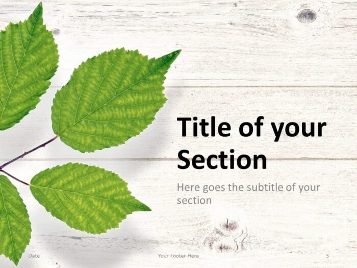 Free Green Leaves Flat Lay Template for PowerPoint – Section Slide (Variant 2)