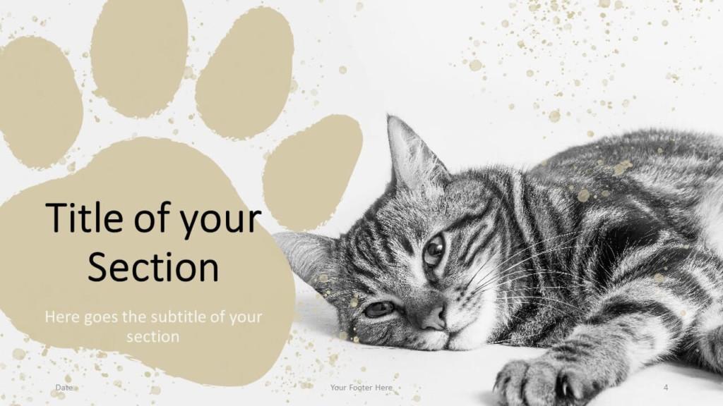 Free Pets Template for Google Slides – Section Slide (Variant 1)
