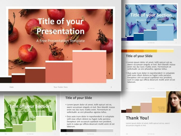 Free Chart Palette Template for PowerPoint and Google Slides