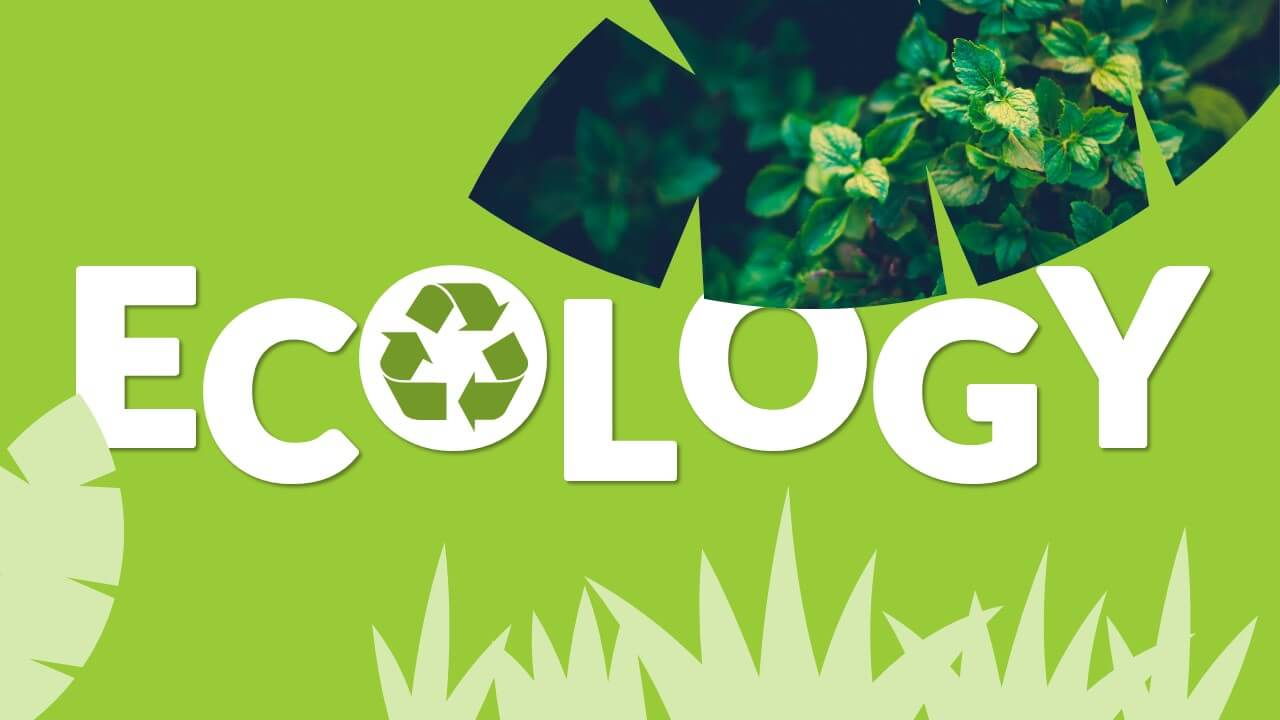 Free ECOLOGY Template for Google Slides - Cover Slide