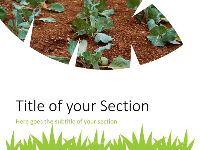 Free ECOLOGY Template for PowerPoint – Section Slide (Variant 1)