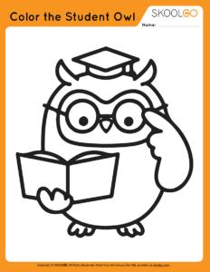 Color The Student Owl - Free Worksheet for Kids