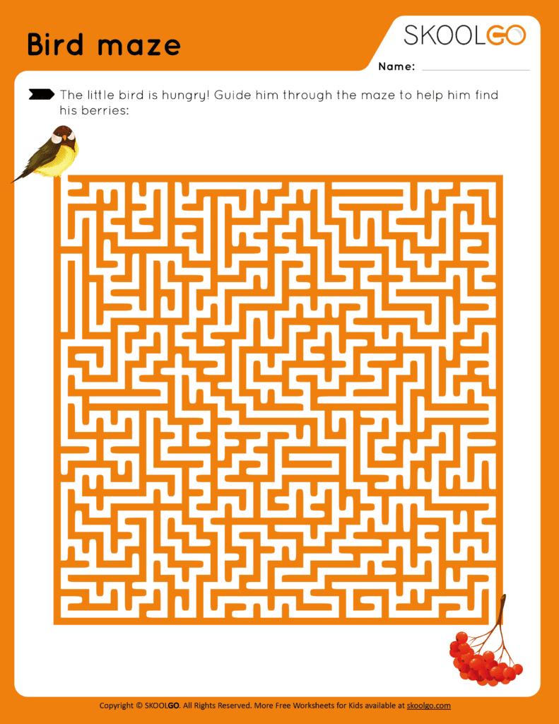 Bird Maze - Free Worksheet for Kids