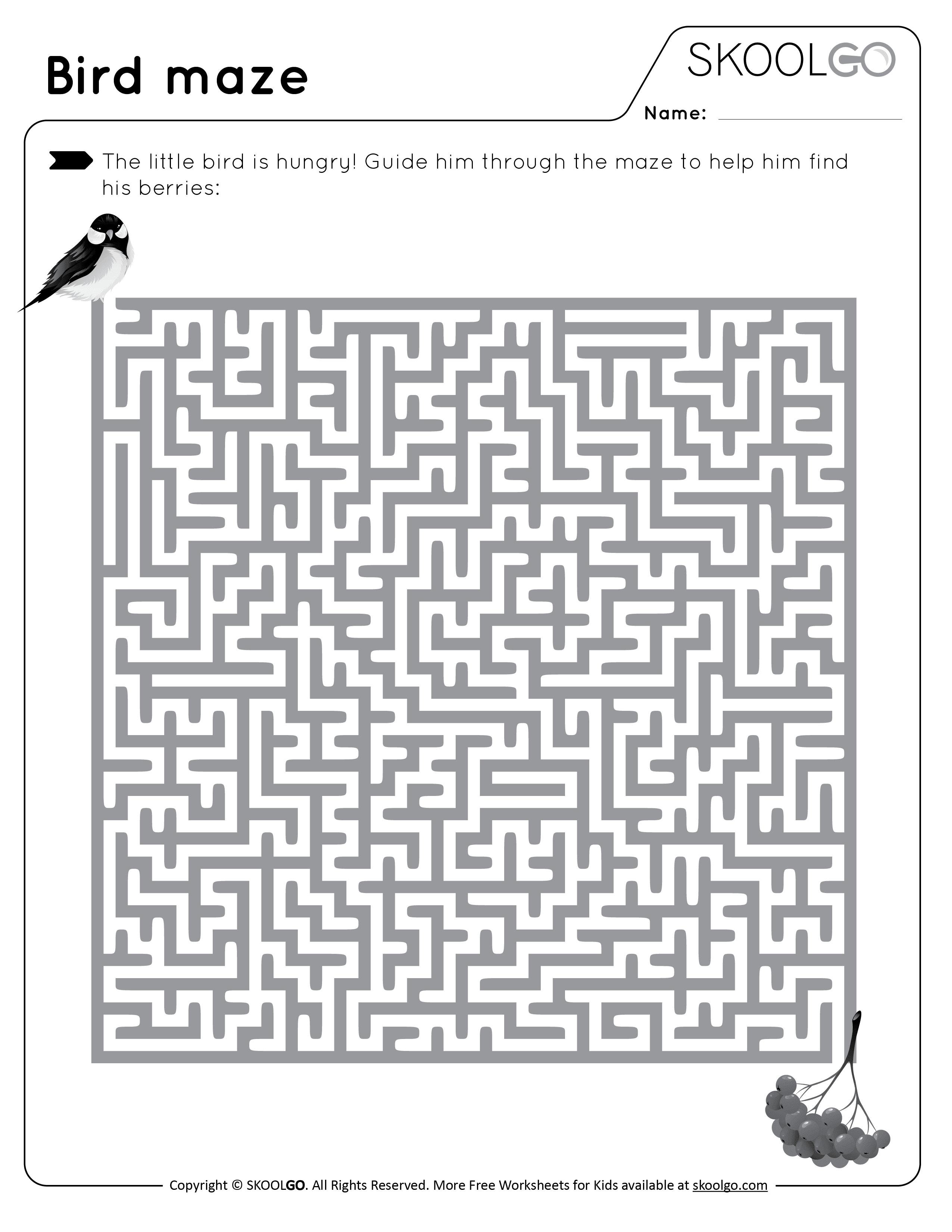 Bird Maze - Free Black and White Worksheet for Kids