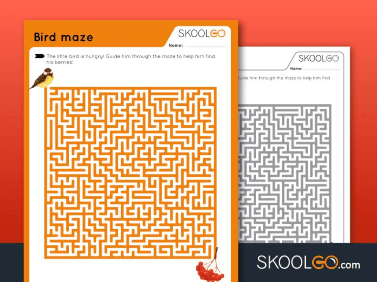 Free Worksheet for Kids - Bird Maze - SKOOLGO
