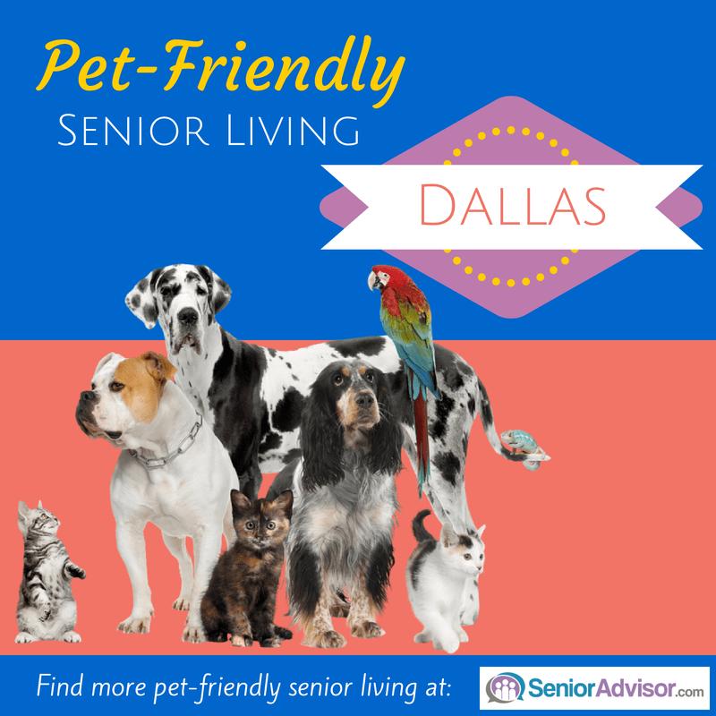 Pet-Friendly Senior Living in Dallas