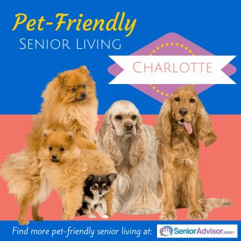 Pet-Friendly Senior Living in Charlotte NC