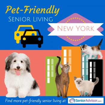 Pet-Friendly Senior Living in New York City