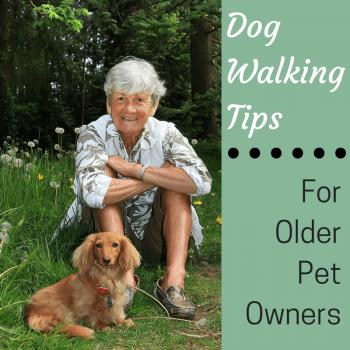 Dog Walking Tips