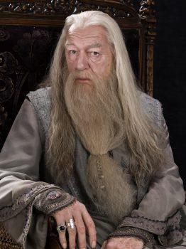 Albus Dumbledore, Harry Potter (source: fr.harrypotter.wikia.com)