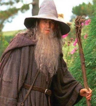 Gandalf the Grey, The Lord of the Rings (source: lotr.wikia.com)