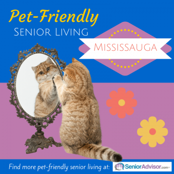 Pet-Friendly Retirement Homes in Mississauga