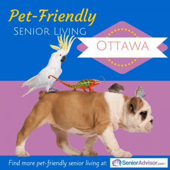 Pet-Friendly Retirement Homes in Ottawa