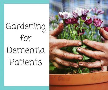 Gardening for Dementia Patients
