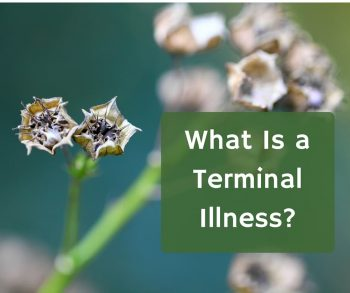 What Is a Terminal Illness?