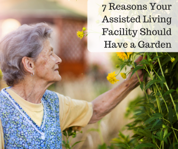 7 Reasons Your Assisted Living Facility Should Have a Garden