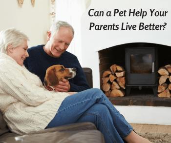 Can a Pet Help Your Parents Live Better?