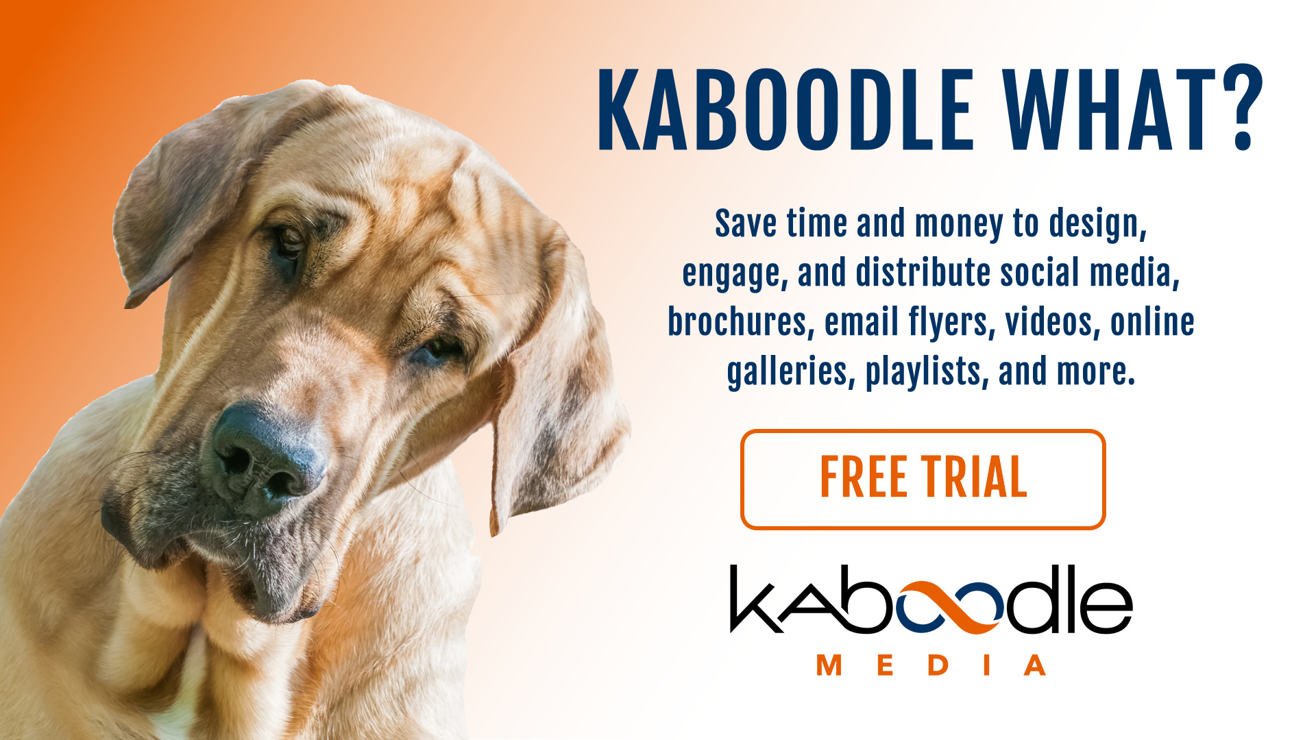 Kaboodle What?
