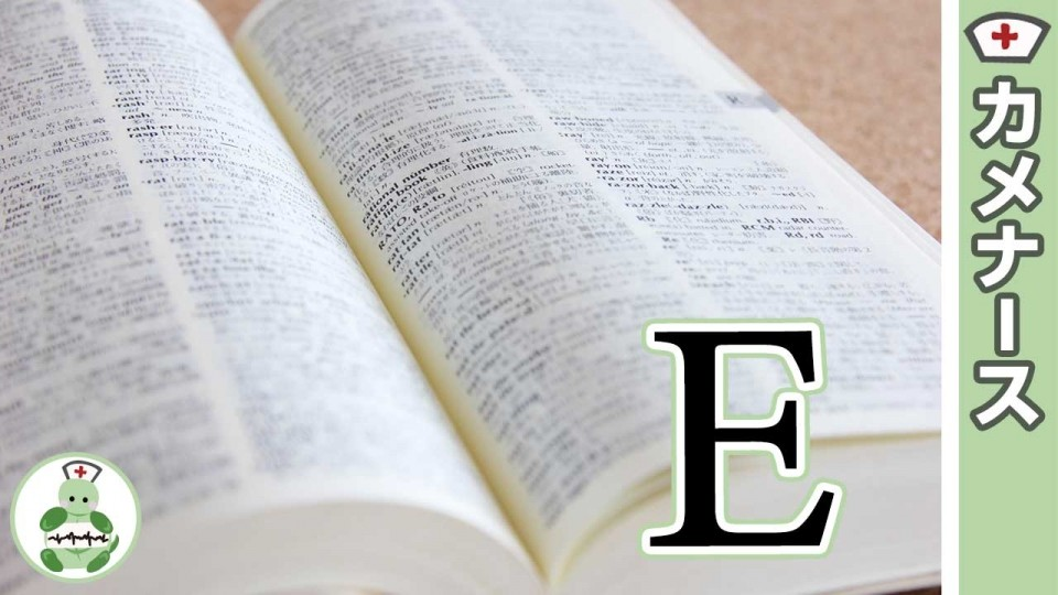 鼻血の医療英語は?「Epistaxis」Eから始める国際看護の道