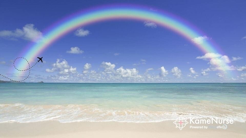 ニューヨーク州看護師免許〜ハワイ州看護師免許へライセンス切替:エンドースメント