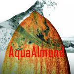 AquaAlmond Productions