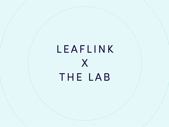 The Lab Cannabis brand
