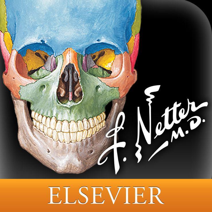 Netters Anatomy Atlas