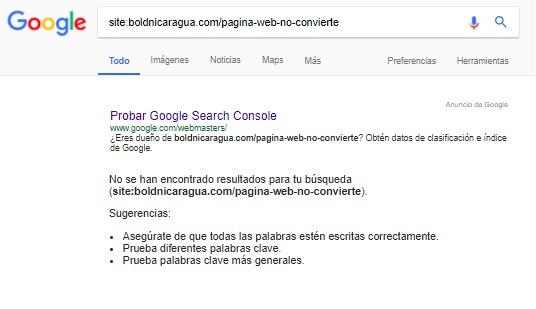 Sitio web no indexado por google