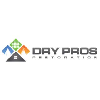 Disaster Cleanup a Dry Pros Company
